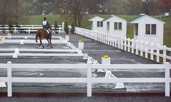dressage rings sm